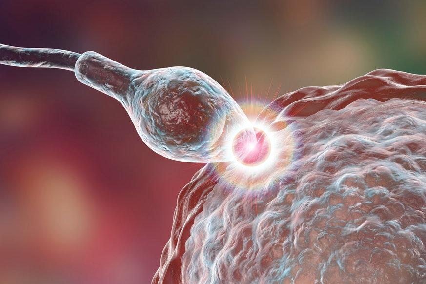 Cần biết Tinh trùng yếu vẫn có thể thụ thai và có con nếu áp dụng triệt để 3 nguyên tắc này 1