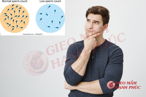 Cách khắc phục tinh trùng loãng