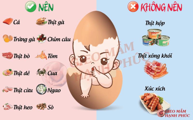 thực phẩm bổ trứng