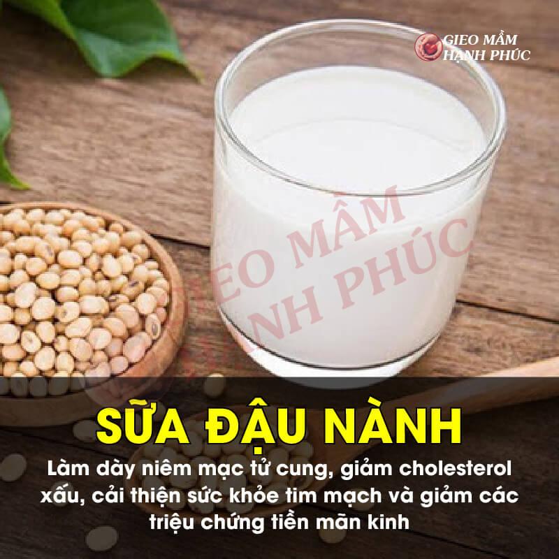 Nước uống bổ trứng khỏe tinh trùng: Sữa đậu nành