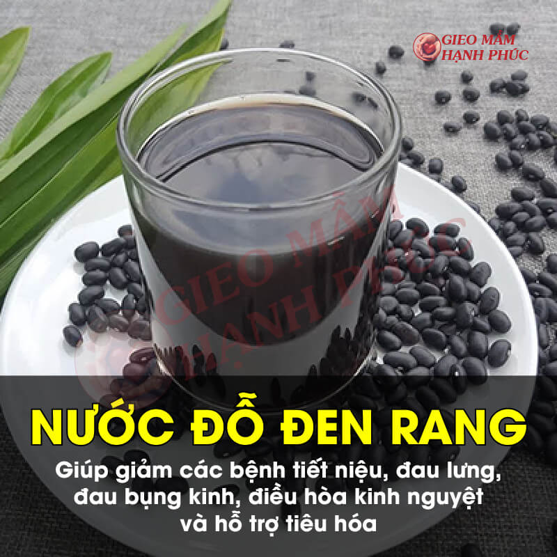 Nước uống bổ trứng khỏe tinh trùng: Nước đỗ đen rang