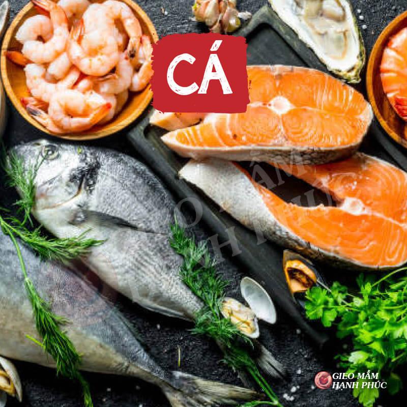 Cá: Thực phẩm làm dày niêm mạc tử cung