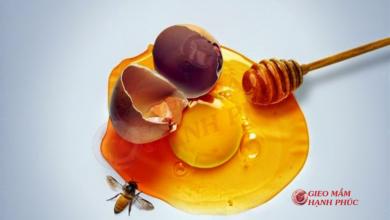 trứng gà mật ong tốt cho tinh trùng